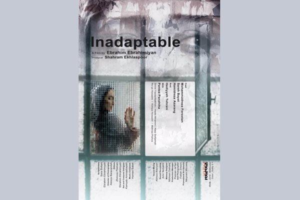 حضور آاادت نمی کنیم در 2 جشنواره جهانی سینمایی