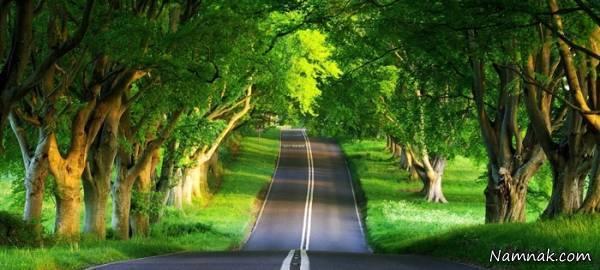 جاده های زیبا و رویایی ایران در شمال