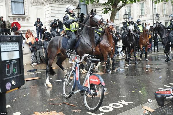مقابله با شورش معترضان از طریق احشام و در حضور مدونا (تصاویر)