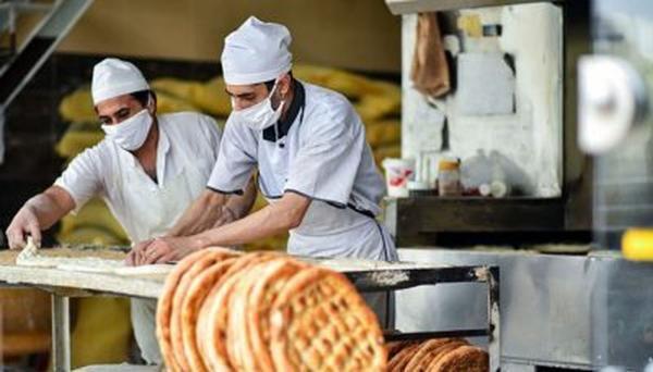 تعطیلی برخی نانوایی ها به دلیل کمبود آرد، گندم های امسال خوراک دام شد