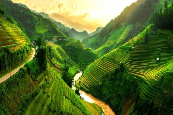 10 علت که شما را برای سفر به ویتنام تشویق می نماید